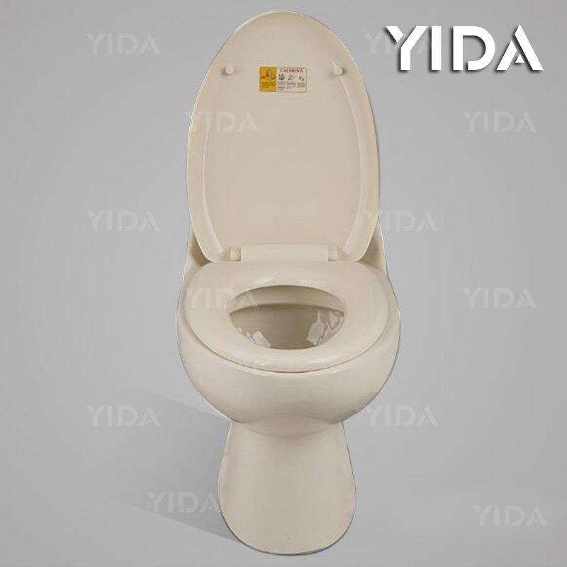 One Piece Toilet Siphonic Flush 8054