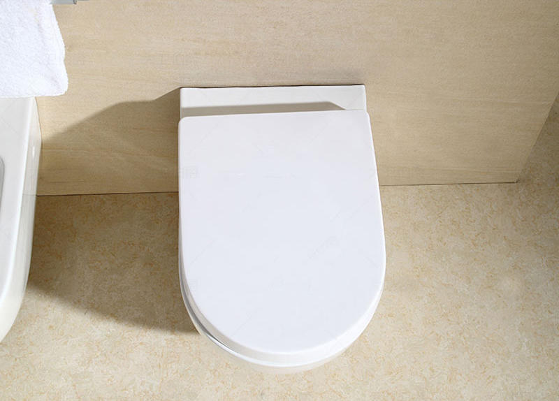 Europe design economic wall mounted commode/toilet - WH-003