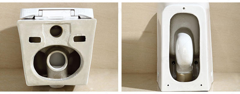 Wall Hung Toilet Ceramic Bidet Hospital Water Closet - WH-002